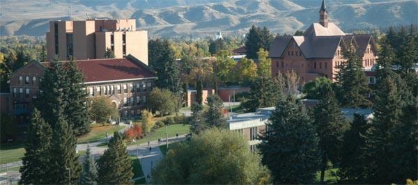 Montana State University - Billings
