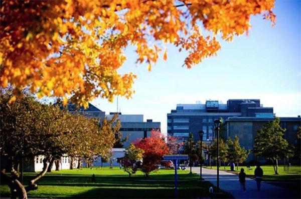 State University College at Buffalo